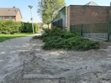 Nieuw beleid in Dinkelland voor openbaar groen