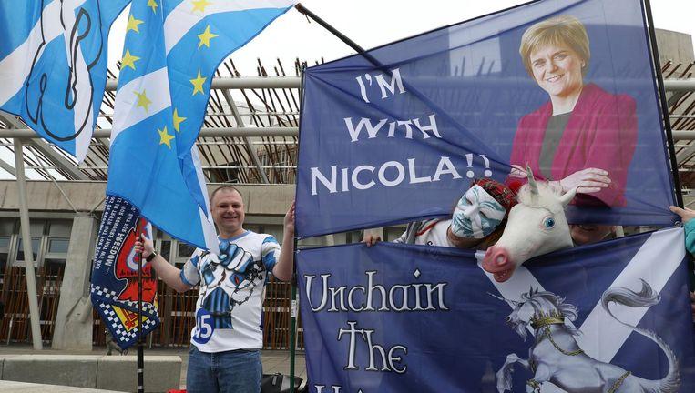 Een voorstander van het referendum vandaag bij het parlement. Beeld ap