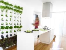 Kleine kamer en toch veel planten? Ga voor de groene wand