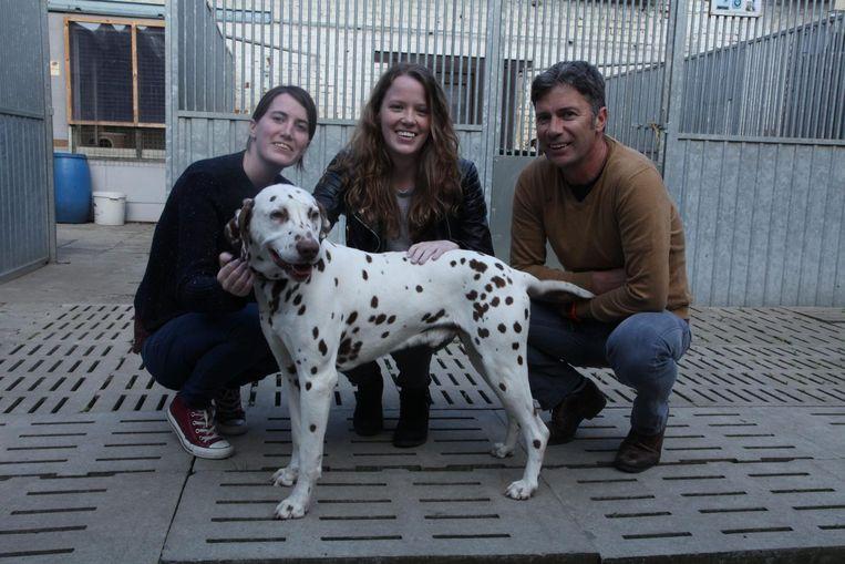 Pongo heeft geluk en vindt een nieuwe thuis bij de familie