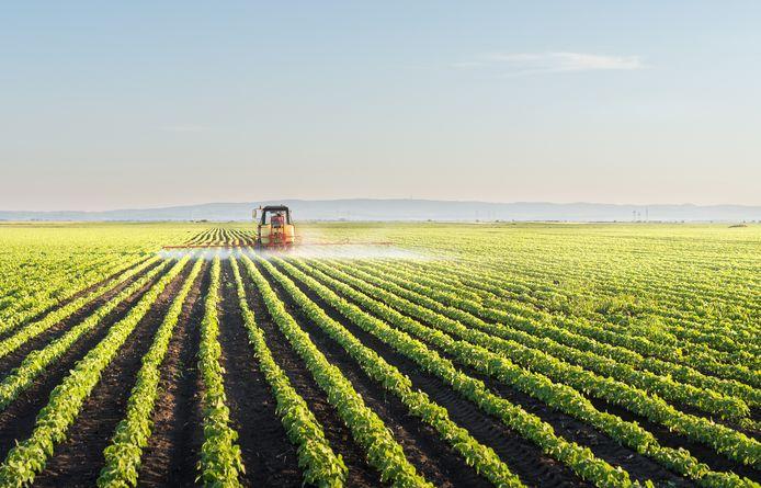 Een tractor sproeit pesticide.