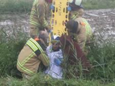 Edward Planckaert percuté par une voiture pendant son entraînement, le conducteur a pris la fuite