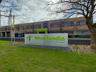 Westlandia en Sociale Werkplaatsen Poperinge nemen met Vlaamse steun extra krachten in dienst voor nieuwe projecten