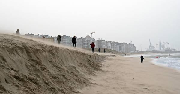 Nieuw Miljoenen kuub zand erbij in Knokke, en dat komt grotendeels uit MV-12