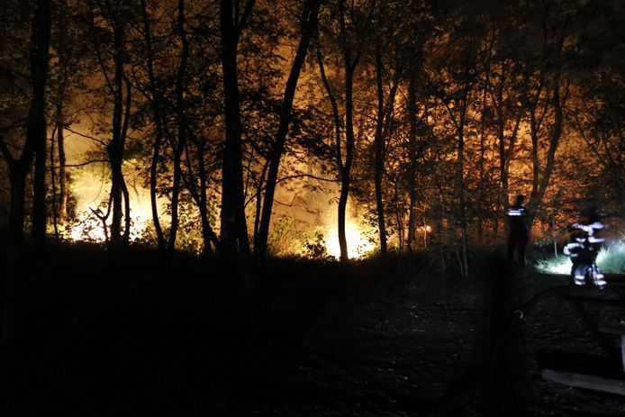 Flinke brand in de bossen bij Boxmeer.