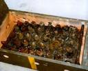Kist met uit Oosterschelde opgedoken roestende munitie