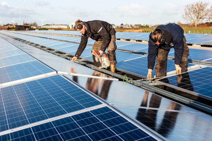 Medewerkers van het bedrijf Baatje Grondverzet leggen de laatste hand aan de zonneweide bij Hazerswoude-Dorp.