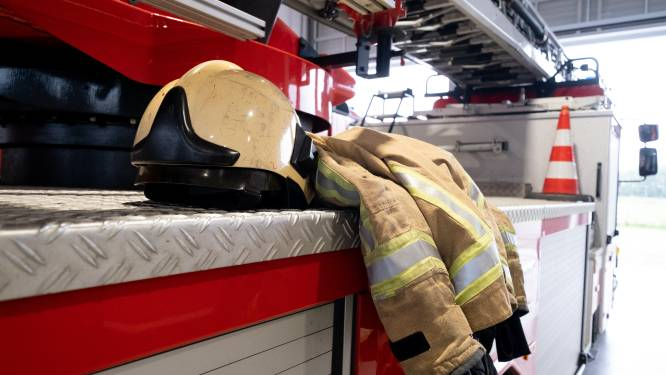 Brandweer rukte in onze regio het vaakst uit voor wespennesten