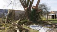 Schedelbreuk na tak van 200 kilo op hoofd