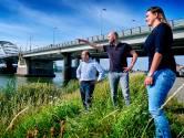 'Werken aan Papendrechtse brug gaat niet zonder herrie'
