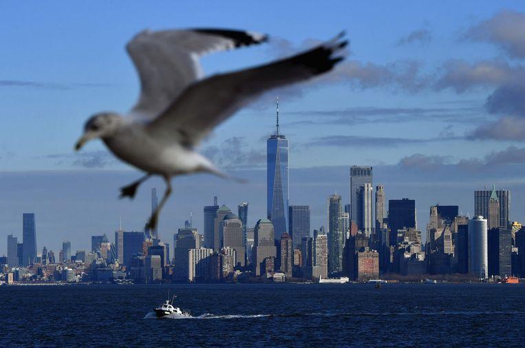 New York is het afgelopen jaar zo'n 9 centimeter bij ons vandaan geschoven: de snelheid waarmee je vingernagels groeien. Beeld AFP