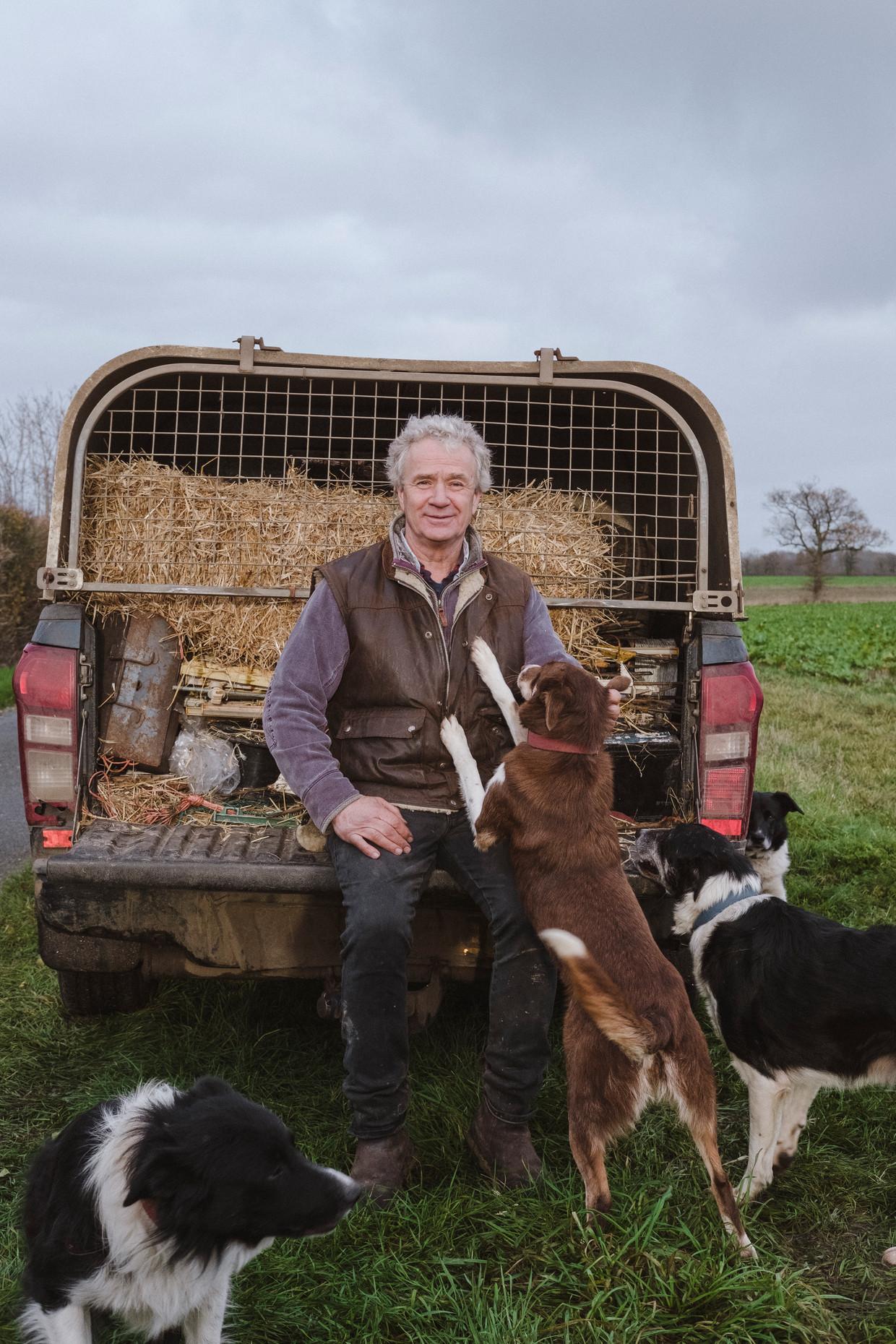 Schapenboer Tim Crick met zijn honden. Beeld Carlotta Cardana
