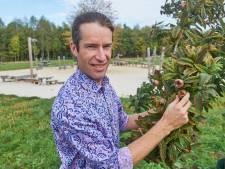 Zeelandse schoolbosje krijgt allure met smakelijk, sportief en speels karakter