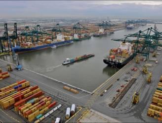 Bijna twee ton cocaïne met straatwaarde van 55 miljoen euro onderschept in Antwerpse haven