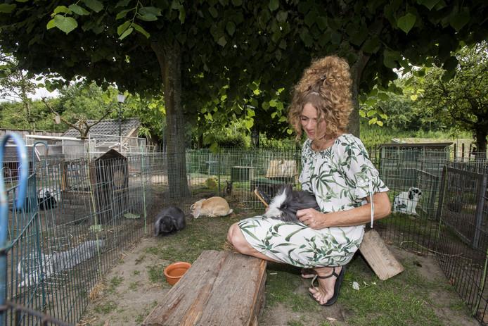 Maaike Olde Monnikhof runt een konijnenopvang in De Lutte. Deze week verwacht ze een brief van de gemeente, die haar vraagt een andere onderkomen te zoeken voor haar 53 konijnen en 2 cavia's.