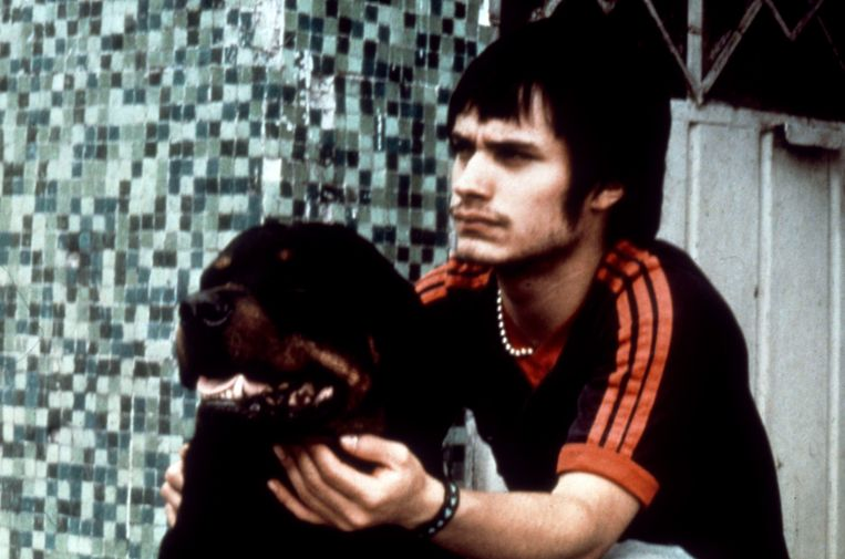 Gael García Bernal in 'Amores perros'.  Beeld Collection Christophel