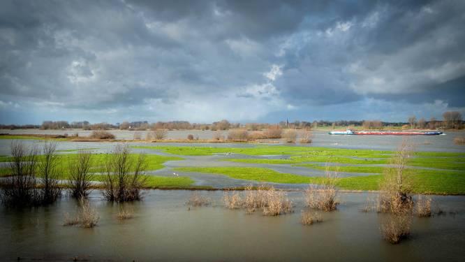 Plan voor meer natuur in uiterwaarden langs de Waal bereikt volgende fase