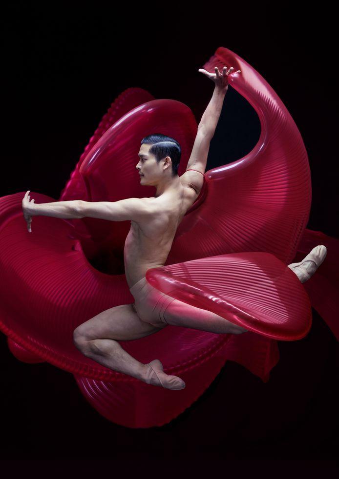 Young Gyu Choi van Het Nationale Ballet
