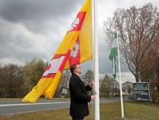 Rozenburger teleurgesteld: nieuwe vlaggen bij entree dorp binnen een week gestolen
