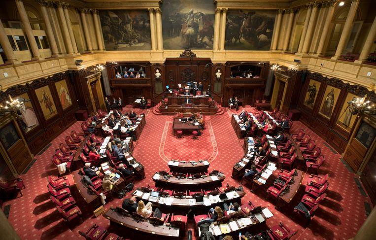 De Belgische Senaat. Beeld BELGA