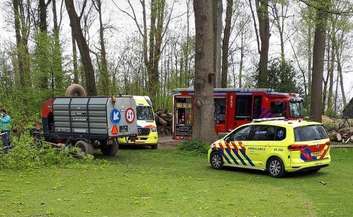 Door een omvallende boom bij een golfclub in Vleuten is een persoon gewond geraakt.