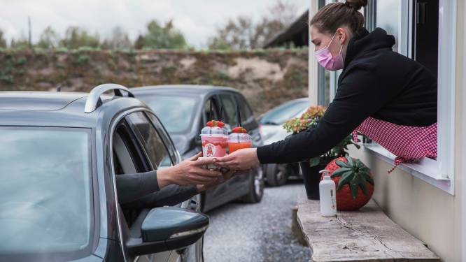 """REPORTAGE. Op uitstap naar de Lommelse Aardbeien Drive-in, waar de wachttijden oplopen tot 3 uur: """"Klanten uit Mechelen en Lier moeten wegsturen omdat het té druk werd"""""""