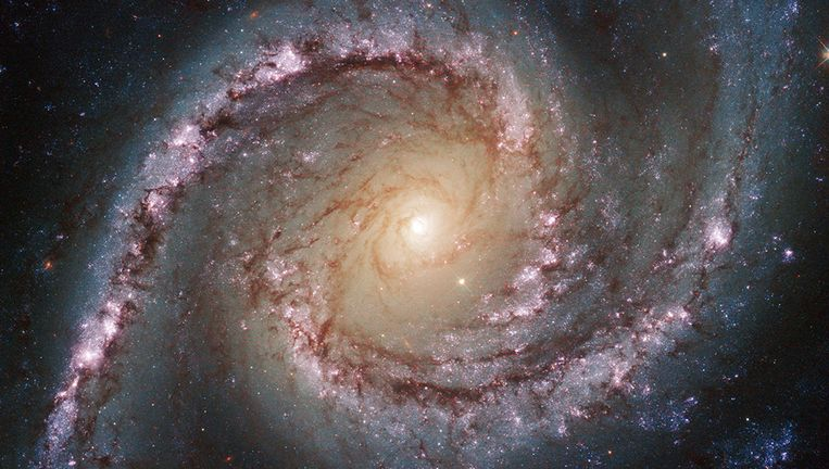 null Beeld NASA/ESA/Space Telescope Science Institute/Association of Universities for Research in Astronomy