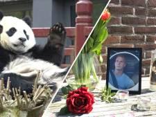 Nieuws gemist? Tijdelijk goedkoper naar Gelderse attracties en stille tocht voor doodgestoken Eduard (27)
