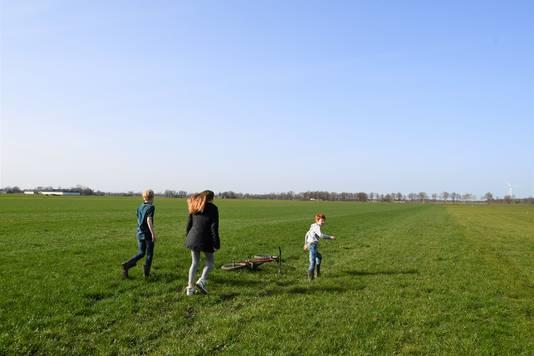 Als uitgelaten jongvee huppelen Krijn, Caia en Teye Smets de wei van vader Martijn in, op zoek naar de kievitsnestjes.
