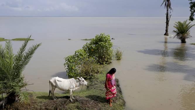 """""""Een tsunami of cycloon en we zijn eraan"""": dit krimpende eilandje is het symbool voor de gevolgen van de opwarming van de aarde"""