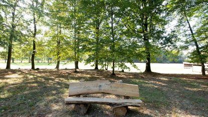 Kapwerken in park van Booischots kasteeldomein