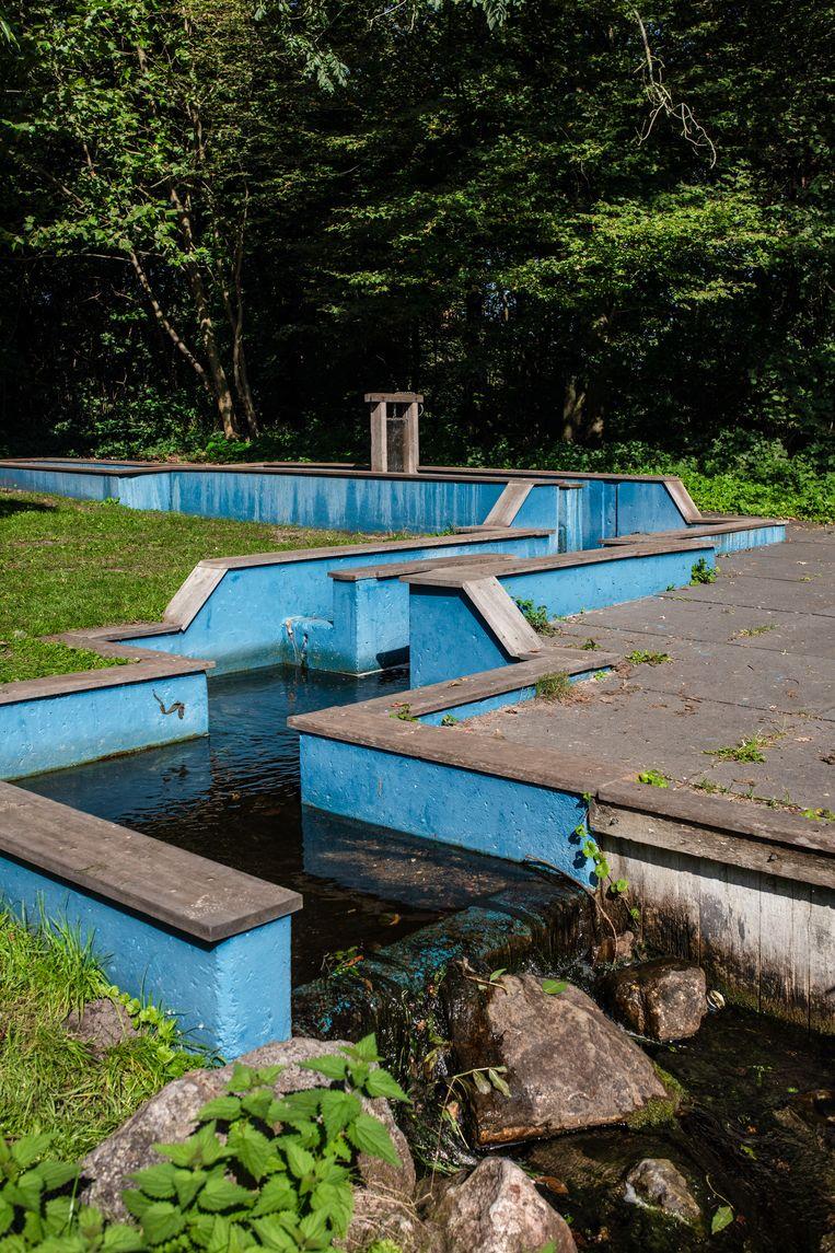 Op 24 oktober wandelden we in het Gaasperpark langs de blauwe sluisjes, een restant van de Waterspeeltuin van de Floriade 1982. Winnaar van het jaarabonnement op Ons Amsterdam is Vera Rosenboom. Beeld Nosh Neneh