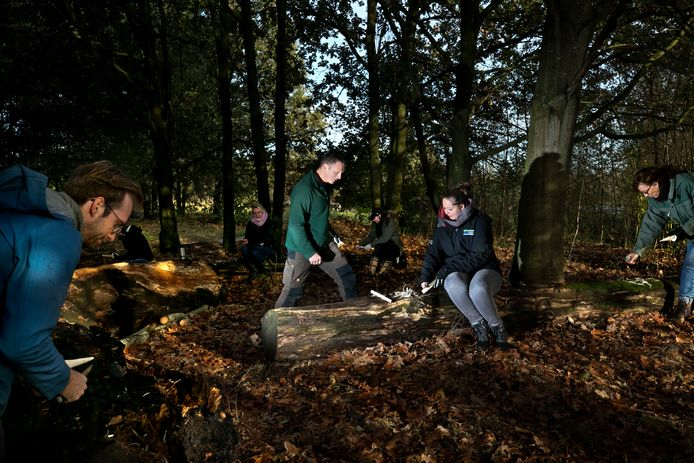 Schoollessen in het bos
