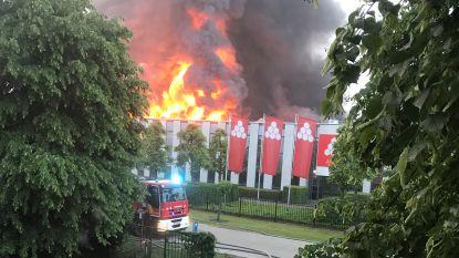 Grote industriebrand zet loods Katoen Natie in lichterlaaie