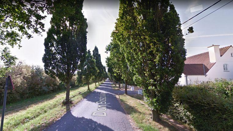 De Don Boscolaan. Het vrijliggend dubbelrichtingsfietspad komt links, achter de bomenrij, waar plaats is.
