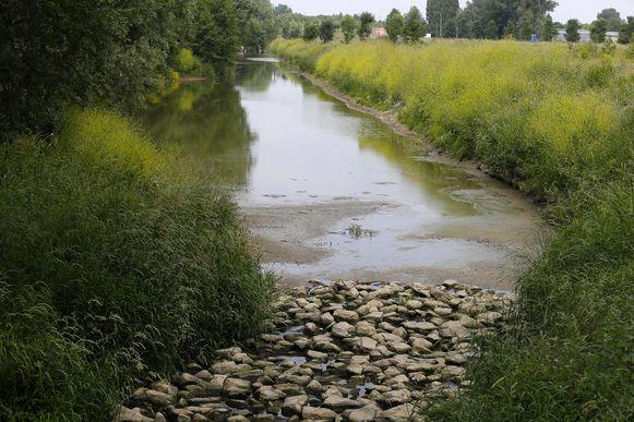De provincie gaat onderzoeken of het de Vleterbeek door de Vroonhofsite kan laten stromen.