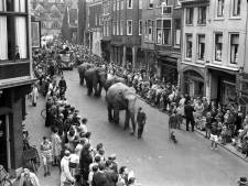 Vroeger liepen olifanten door de binnenstad, nu was er slechts één kip in het Magic Circus