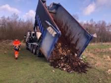 Eerste oogst van Delfts wormenhotel is succesvol, en dat scheelt 70 vrachtwagens aan afval per jaar