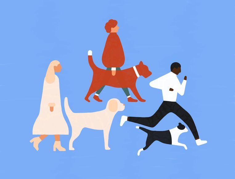 Kies voor een hond die bij je past. Beeld Sophia Twigt