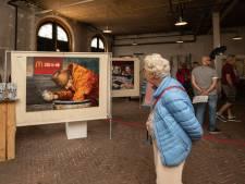 Bezoekers vergapen zich aan 'Kunst op stand' in koninklijke stallen van Paleis Soestdijk
