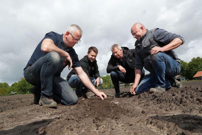 Jan Steverink, Edwin Smits, Jörg Zentner en Gert Smits (v.l.n.r.) op het pompoenveld in De Heurne.