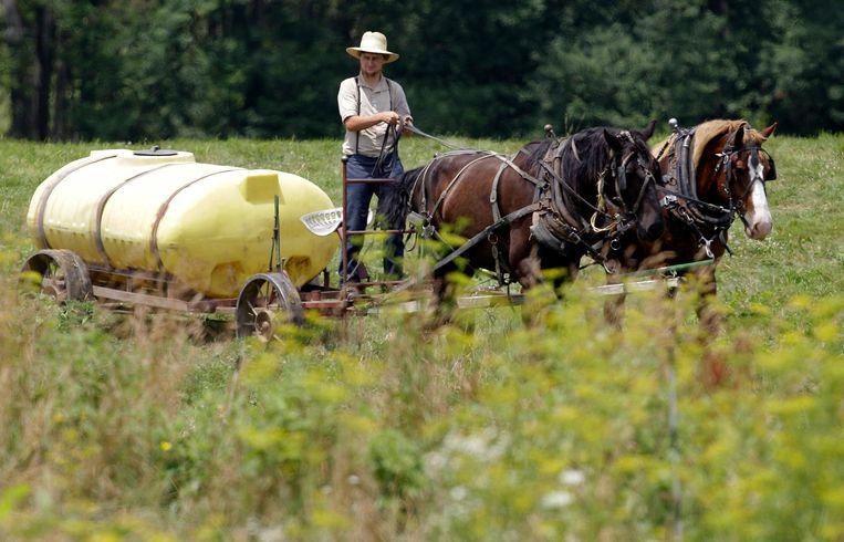 'Farmville' vinden de Amish om logische redenen maar een stom spelletje. Beeld AP
