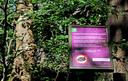 Een bord van Staatsbosbeheer in de Chaamse Bossen waarschuwt dat paalkamperen sinds 1 juni verboden is.