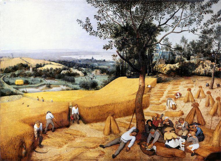 Pieter Brueghel, De oogsters, 1565.  Beeld Metropolitan Museum of Art