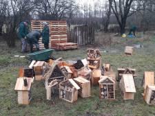 Vrijwilligers zorgen voor bijenhotels in Drunen: één van de vele klussen van NLdoet