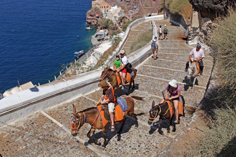 Griekenland wil zo snel mogelijk weer toeristen met muilezeltjes de pittoreske trappen van zijn eilanden zien opklimmen. Beeld BELGAIMAGE