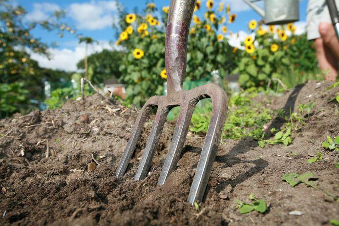 Van een stuk grond van tien bij tien meter kun je dagelijks al goed eten.