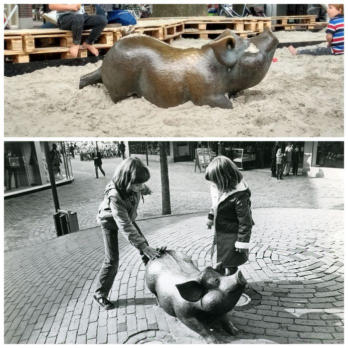 Het varken in 1981 en het varken nu.