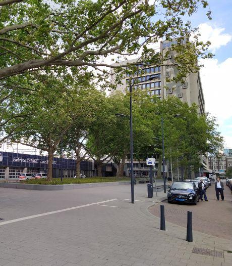 Steeds meer groen verdwijnt: 'Rotterdam wordt een betonstad'