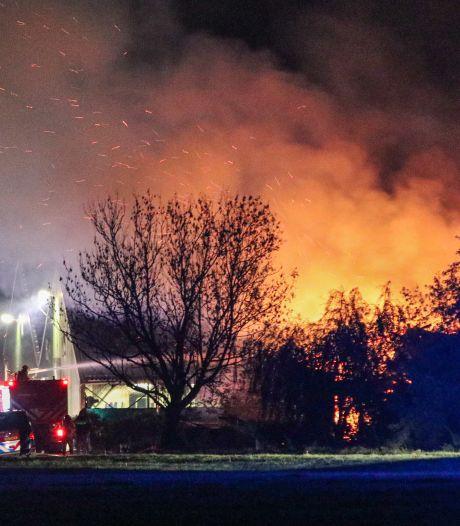 Tientallen kalveren komen om het leven bij boerderijbrand in Flevoland